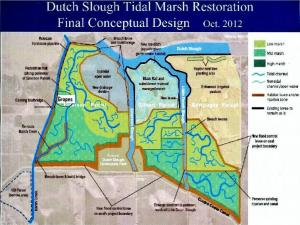 dutch slough